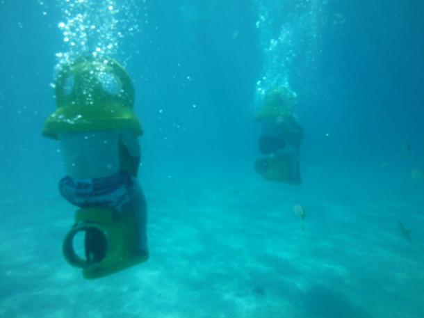bahamas sub 007