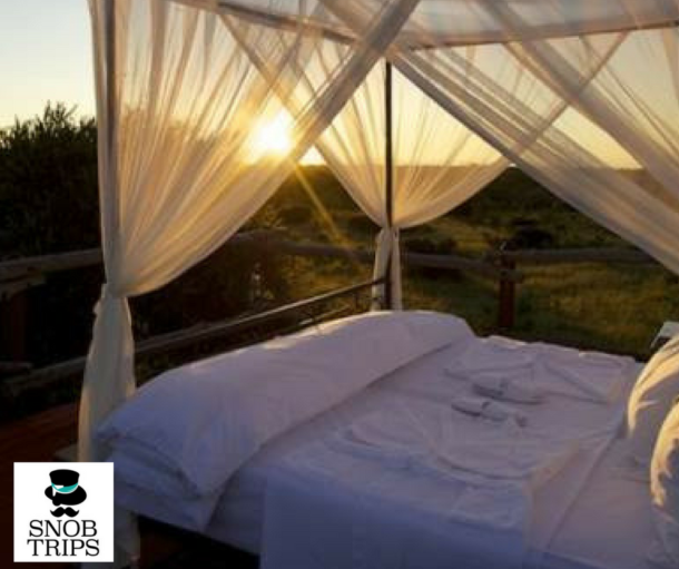 romantic safari honeymoon bed